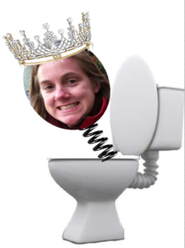 Toilet Clog Clearer – DIY