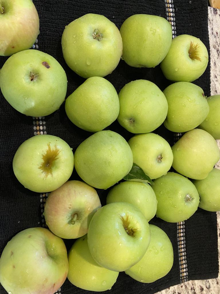 Apple Butter Season!